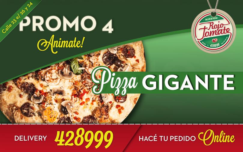 NY Style Pizza  $300 (para 4 / 6 personas)